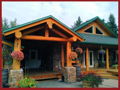 Log Home Framing and Repairs